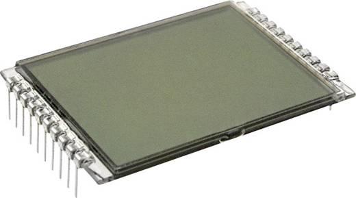 LC-Display Grau (B x H x T) 33 x 9.15 x 50 mm LUMEX LCD-S101D14TR