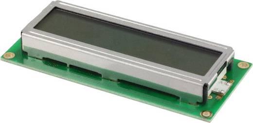 LC-Display Grün (B x H x T) 36 x 12.7 x 80 mm LUMEX LCM-S01602DSF/A