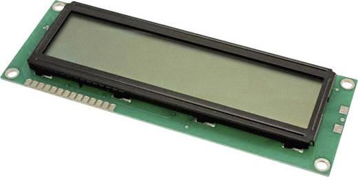 LC-Display Grün (B x H x T) 44 x 8.8 x 122 mm LUMEX LCM-S01602DSR/D