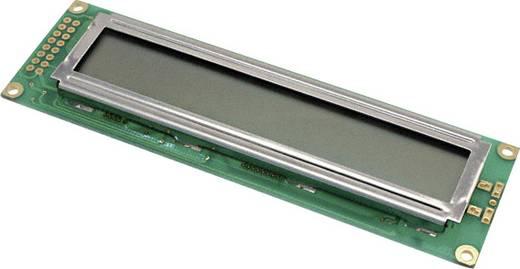 LC-Display Grün (B x H x T) 36 x 8.8 x 118 mm LUMEX LCM-S02402DSR