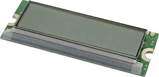 LC-Display Grün (B x H x T) 26 x 6.5 x 66 mm LUMEX LCM-S01602DTR/M