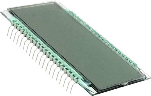 LC-Display Grau (B x H x T) 38.1 x 8.85 x 69.85 mm LUMEX LCD-S401C71TR