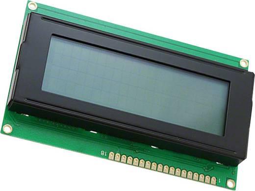 LC-Display Schwarz Grau (B x H x T) 60 x 11.6 x 98 mm LUMEX LCR-U02004DSF-WH