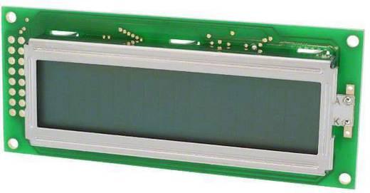 LC-Display Grün (B x H x T) 36 x 12.7 x 85 mm LUMEX LCM-S01602DSF/F