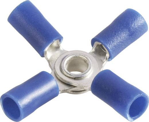 Quetschverteiler Querschnitt (max.)=2.50 mm² Loch-Ø=4 mm Teilisoliert Blau Vogt Verbindungstechnik 3631a4 1 St.