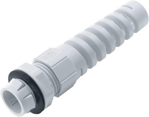 LappKabel SKINTOP® CLICK BS 12 Kabelverschraubung mit Knickschutz M12 Polyamid Silber-Grau (RAL 7001) 1 St.