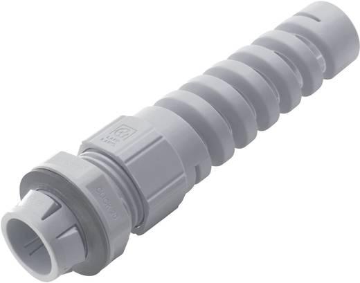 Kabelverschraubung mit Knickschutz M12 Polyamid Licht-Grau (RAL 7035) LappKabel SKINTOP® CLICK BS 12 1 St.
