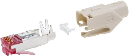 RJ45 Steckverbinder CAT 6 Hirose TM21 Stecker, gerade Pole: 8P8C TM21P-88P(09) Orange Hirose Electronic 222-2862-9-09 1