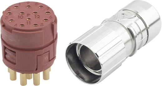 EPIC® Steckverbinder M23 12polig im Set EPIC® KIT M23 D6 12-POL FEMALE LappKabel Inhalt: 1 Set