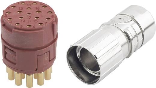 EPIC® Steckverbinder M23 17polig im Set EPIC® KIT M23 D6 17-POL FEMELLE LappKabel Inhalt: 1 Set