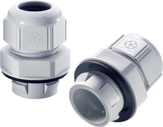 Kabelverschraubung M32 Polyamid Licht-Grau (RAL 7035) LappKabel SKINTOP® CLICK 32 1 St.