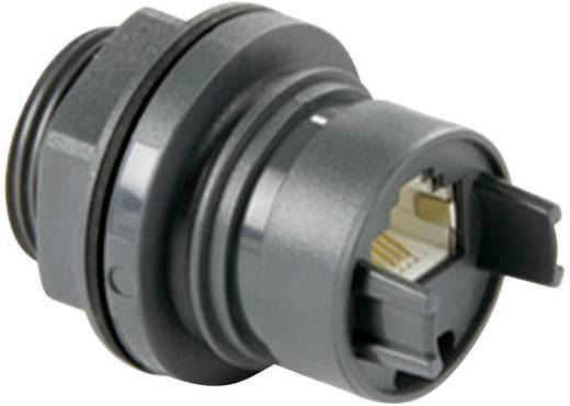 Einbaukupplung Thermoplastik RJ45 PXP6033/TP Bulgin Inhalt: 1 St.