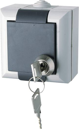 GAO Schutzkontakt-Steckdose abschließbar Business-Line Grau EFO600G/K