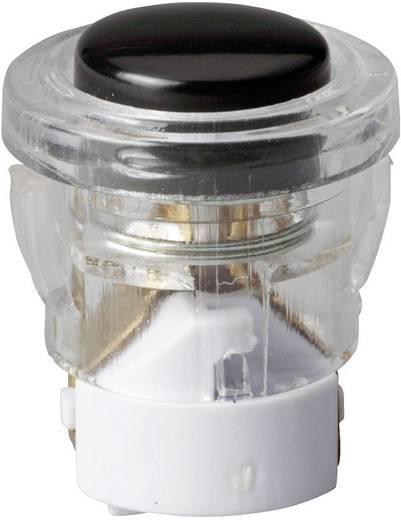 Heidemann 70698 Klingeltaster beleuchtet 1fach Schwarz 24 V/1 A