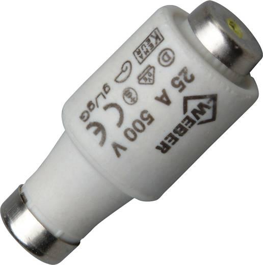 Diazed-Sicherung Sicherungsgröße = DII 25 A 500 V Kopp 3255.0008.9