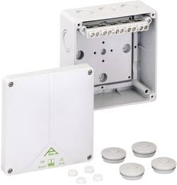Propojovací krabice Spelsberg Abox-i 100 - 10², IP65, šedá, 49041001