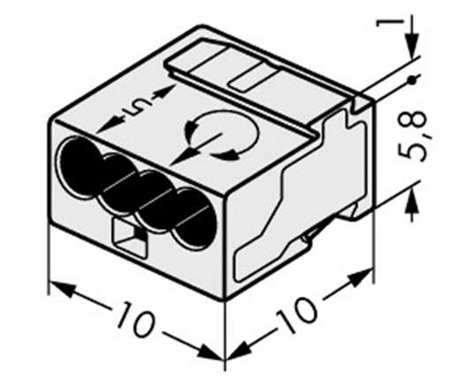Dosenklemme starr: -0.8 mm² Polzahl: 4 WAGO 1 St. Licht-Grau