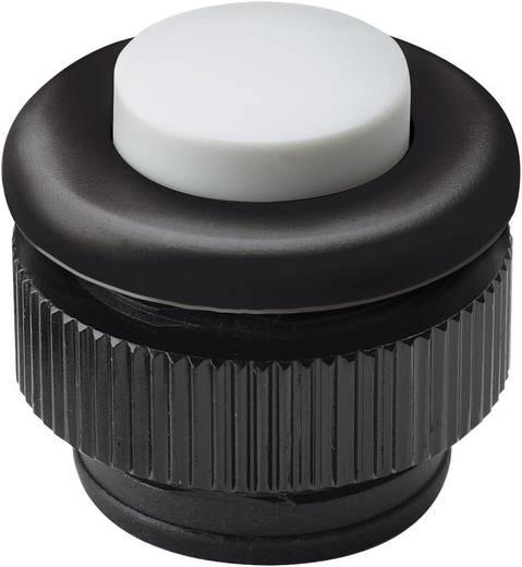 Grothe 61031 Klingeltaster 1fach Schwarz, Weiß 24 V/1,5 A