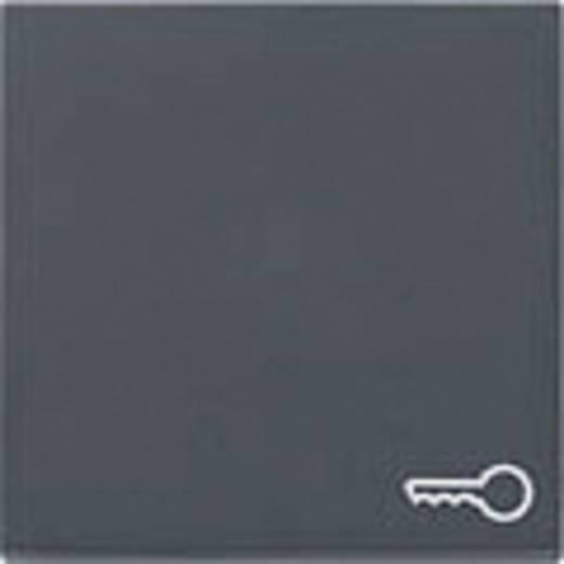 "GIRA Abdeckung Symbolwippe ""Schlüssel"" System 55, Standard 55, E2, Event, Event Klar, Event Opak, Esprit, ClassiX Anthrazit 028728"