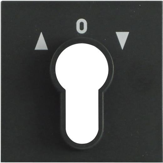 GIRA Abdeckung Schlüsselschalter System 55, Standard 55, E2, Event, Event Klar, Event Opak, Esprit, ClassiX Anthrazit 0