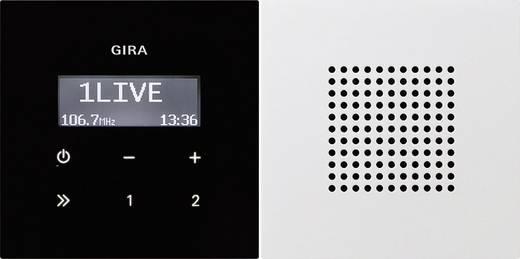 GIRA Einsatz Unterputz-Radio Flächenschalter Reinweiß 2280112