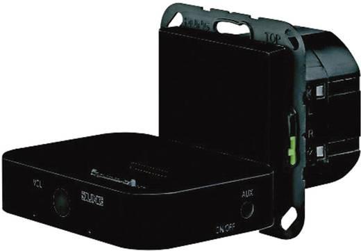 Jung Einsatz Dockingstation LS 990, AS 500, CD 500, LS design, LS plus, FD design, A 500, A plus, A creation, CD plus, SL 500 Schwarz MCA100SW