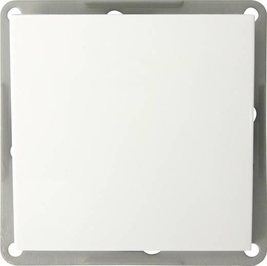 GAO Einsatz Wechselschalter Modul Weiß EFP100A