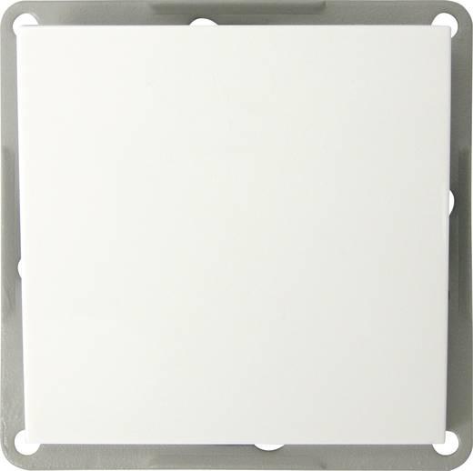 GAO Einsatz Taster Modul Weiß EFP100D
