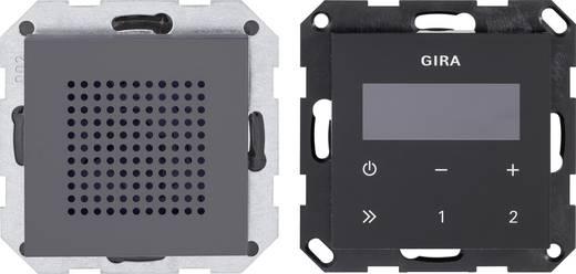 Gira Radio Weiß gira einsatz unterputz radio system 55 anthrazit 228028 kaufen