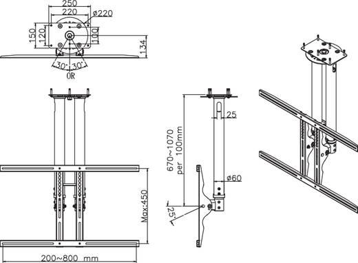 """TV-Deckenhalterung 94,0 cm (37"""") - 190,5 cm (75"""") Neigbar+Schwenkbar NewStar Products PLASMA-C100"""