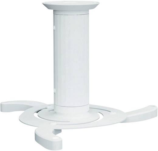 Beamer-Deckenhalterung Neigbar, Drehbar Boden-/Deckenabstand (max.): 15 cm NewStar Products Vidéoprojecteur C80WHITE We