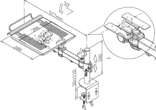 Notebook-Ständer NewStar Products NOTEBOOK-D100 neigbar, höhenverstellbar