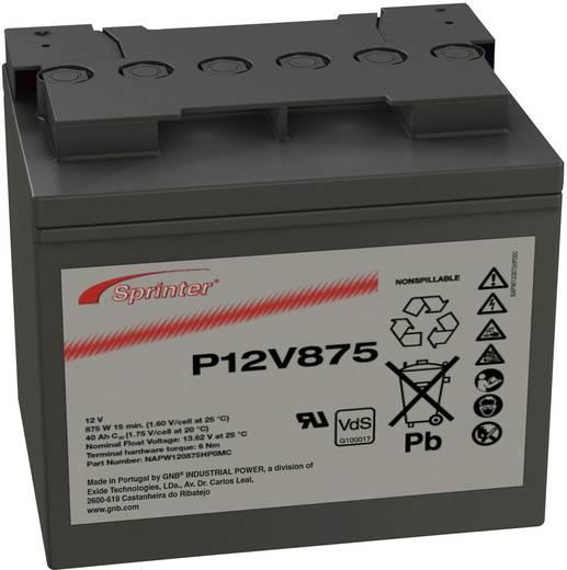 Bleiakku 12 V 41 Ah GNB Sprinter P12V875 NAPW120875HP0MC Blei-Vlies (AGM) (B x H x T) 200 x 176 x 169 mm M6-Schraubanschluss Wartungsfrei, VDS-Zertifizierung