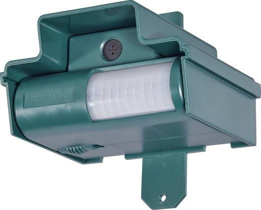 Tiervertreiber Ultraschall IP 7810 Wirkungsbereich 70 m² 1 St.