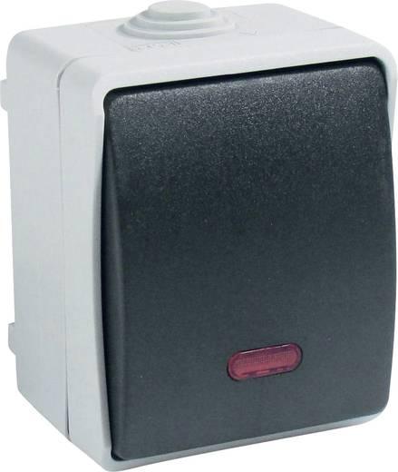 GAO Kontrollschalter Standard Grau 9876