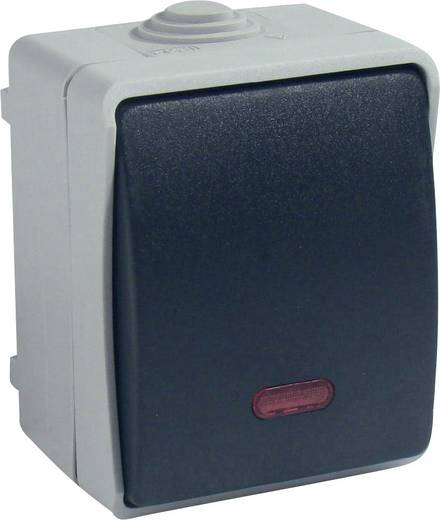 GAO Kontrollschalter Standard Grau 9877