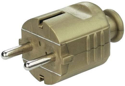Schutzkontaktstecker Kunststoff Gold
