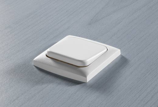 inprojal elektrosysteme Einsatz Taster Weiß 102558
