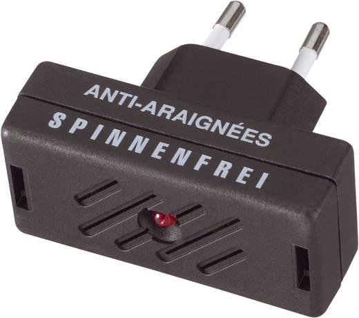 Spinnenvertreiber Isotronic Anti-Spider 66971 (L x B x H) 63 x 30 x 65 mm Schwarz 1 St.