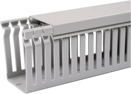 Verdrahtungskanal (L x B x H) 2000 x 80 x 40 mm OBO Bettermann 6178016 2 m Grau