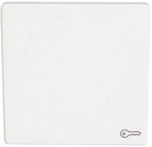"""Berker Abdeckung Symbolwippe """"Schlüssel"""" Q.3, Q.1 Polarweiß 1620 60 69"""