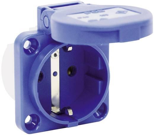 Anbau-Steckdose IP54 Blau PCE 601.450.06