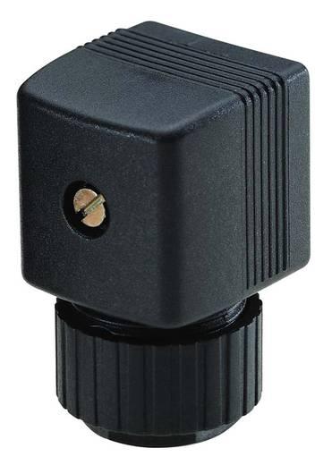 Gerätesteckdose Bürkert 2508 Form A 12 - 24 V/DC