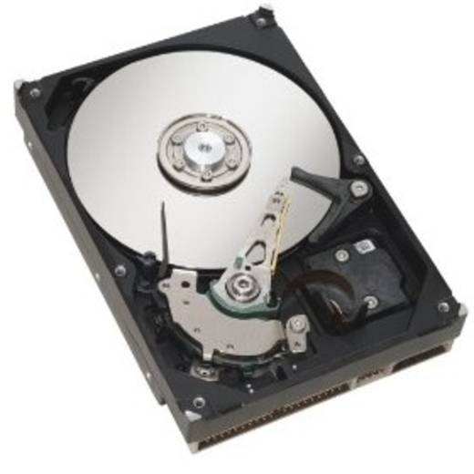 Interne Festplatte 8.9 cm (3.5 Zoll) 300 GB Fujitsu S26361-F3291-L530 SAS