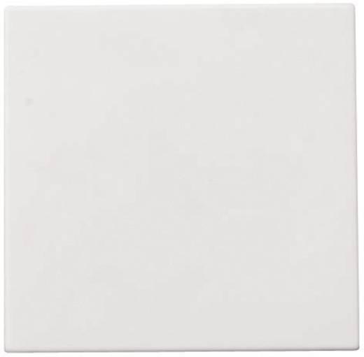 GAO Einsatz Taster Starline Weiß 3502