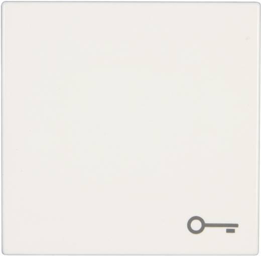 Jung Abdeckung Symbolwippe Schlssel LS 990 Design Plus Alpinweiss