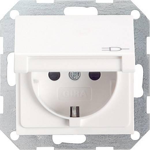GIRA Einsatz Schutzkontakt-Steckdose System 55, Standard 55, E2, Event, Event Klar, Event Opak, Esprit, ClassiX Sauber-Weiß (glänzend) 045403