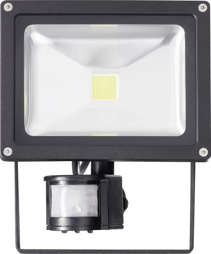 LED-Außenstrahler mit Bewegungsmelder 20 W Kalt-Weiß 627900 Schwarz