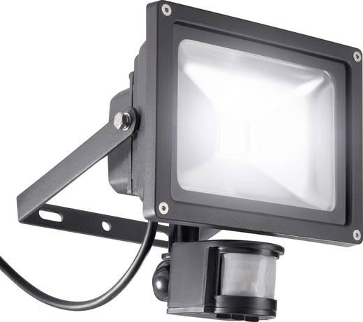 627900 LED-Außenstrahler mit Bewegungsmelder 20 W Kalt-Weiß Schwarz