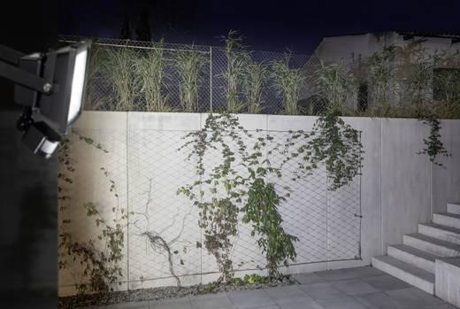 LED-Außenstrahler mit Bewegungsmelder 30 W Kalt-Weiß Schwarz